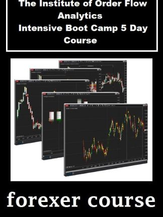 The Institute of Order Flow Analytics – Intensive Boot Camp Day Course