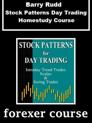 Barry Rudd Stock Patterns Day Trading Homestudy Course
