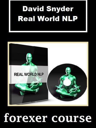 David Snyder Real World NLP
