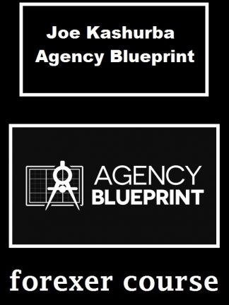 Joe Kashurba Agency Blueprint