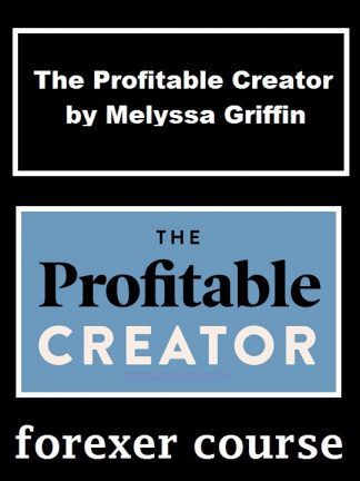 The Profitable Creator by Melyssa Griffin